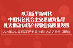 """一圖讀懂""""中共國家知識產權局黨組擴大會議報告"""""""
