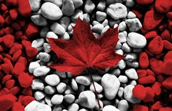 加拿大正式批準《專利法條約》