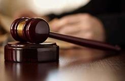 標準必要專利的司法規制原則
