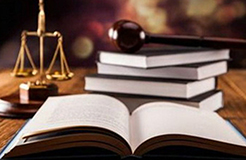 逾期提交證據的法律后果認定