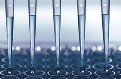 科睿唯安推出新型冠状病毒研究资源专栏,全力支持抗击疫情