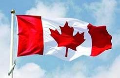 加拿大专利法律状态和年费查询步骤