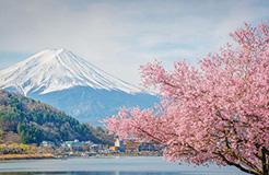 日本专利局发布高关注度专利技术动向调查