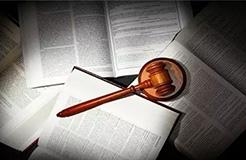 深圳一公司囤积商标,381件申请被驳回