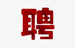 聘!广州四二六人才发展院(普通合伙)招聘「市场总监+项目专员+市场外联部项目专员」
