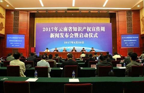 【云南】2016知识产权司法保护十大典型案例
