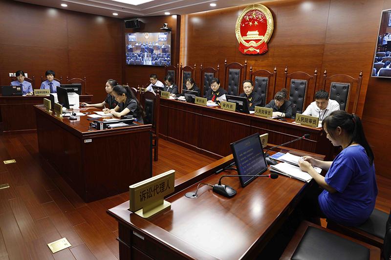 夫妻售假双双获刑  北京首例检方打假公益诉讼开庭