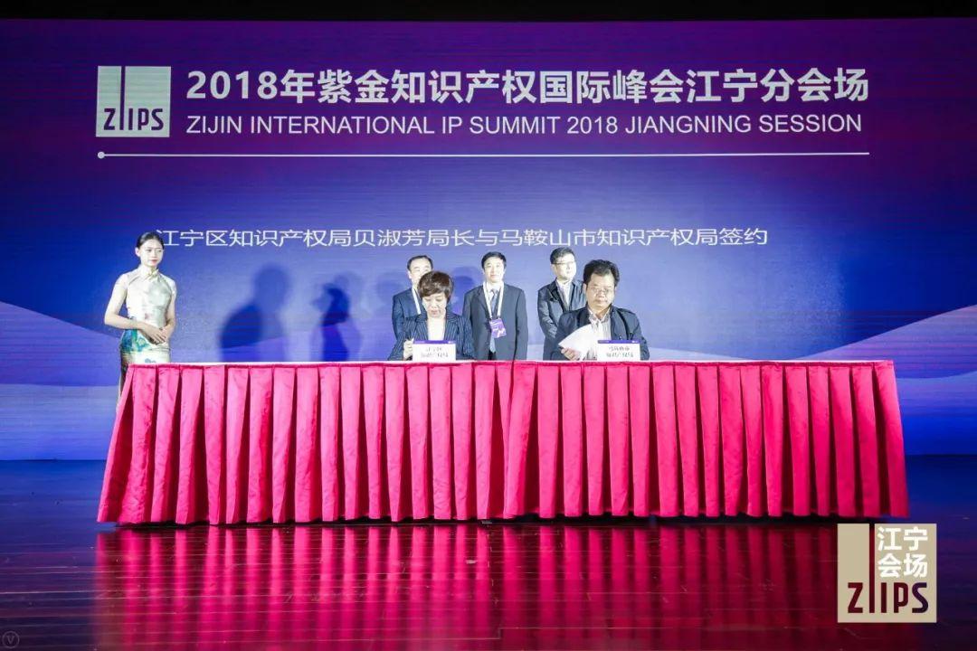 2018紫金知识产权国际峰会成功举办!