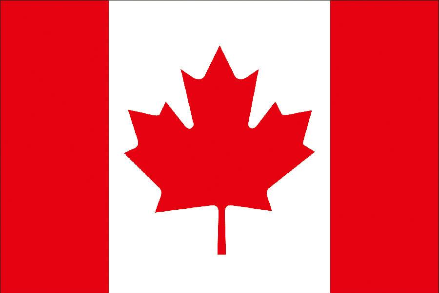 【优蚁网浅析】美国、加拿大专利年费制度及商标续展制度