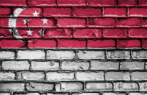 《新加坡版权审查报告》发布