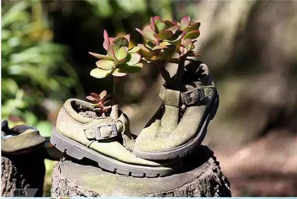 """跟随环保脚步,发扬鞋子新风尚,探寻""""鞋子""""的专利技术"""