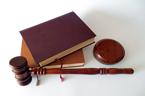 """有关""""白洋淀""""商标驳回复审决定书"""