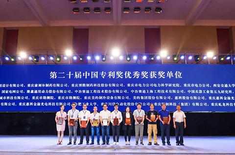 助推产业发展 2019中国(重庆)知识产权产业服务峰会启幕