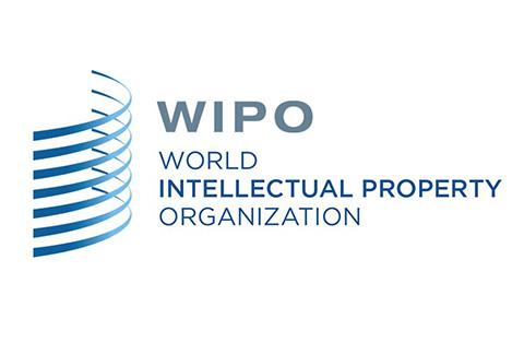 #晨报#WIPO 仲裁与调解中心成为中国国家顶级域名争议解决机构(自2019.8.1日起)