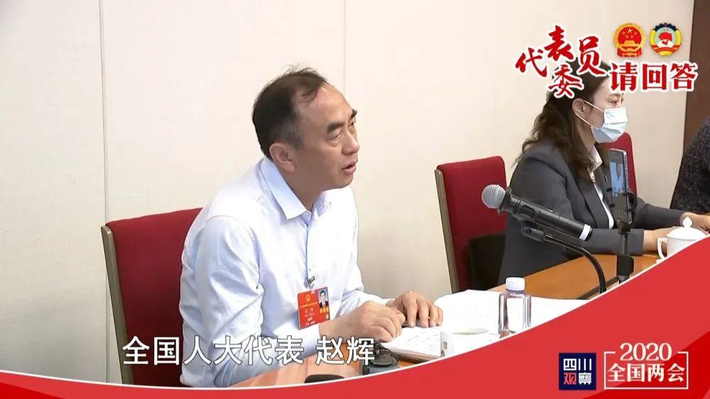 全国人大代表代表赵辉:搞好知识产权,才能占领高端市场