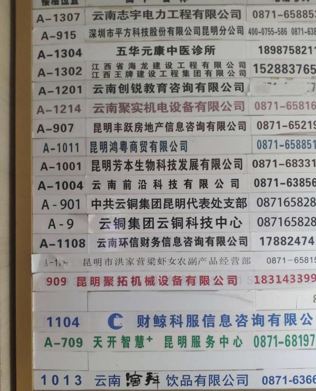 中国云铜昆明代表处被查封:伪造中央机构,豪言捐五百吨黄金