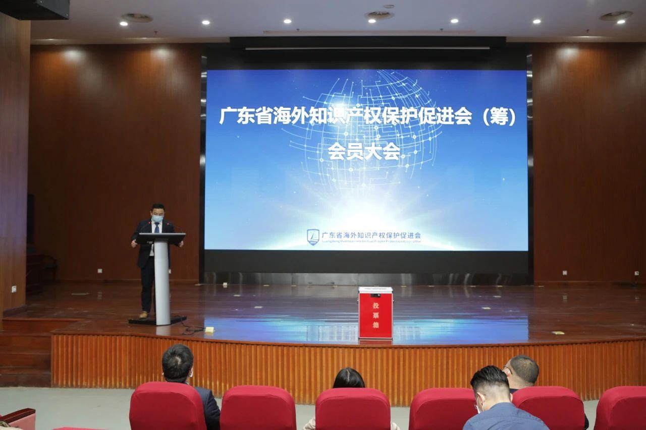 企业出海护航新助力:广东省海外知识产权保护促进会