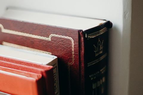 新书推荐 |《严格知识产权保护——制度探索与地区实践》