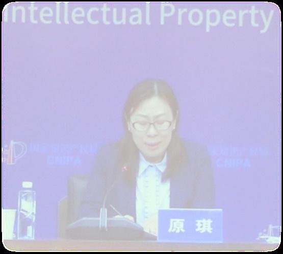 中国专利保护协会人工智能专业委员会成立大会暨第一次全体会议在京成功召开