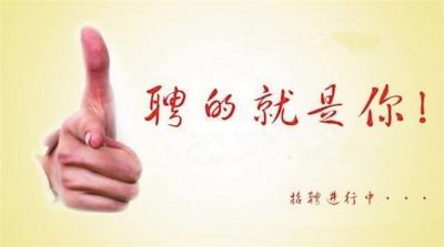 北京法院公开招聘1458名聘用制审判辅助人员,知产院拟招录29人(附招聘表)